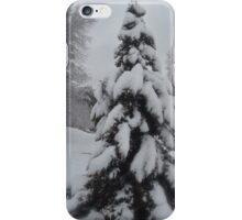In The Silence iPhone Case/Skin
