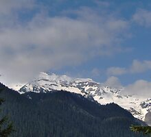 Mount Rainier by impala01gurl