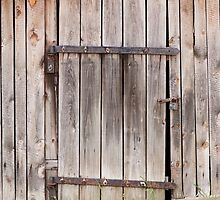 old shed dilapidated cubby door by Arletta Cwalina