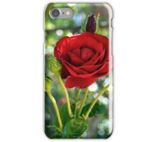 Roses Are Red .... Violets Are Blue iPhone Case/Skin