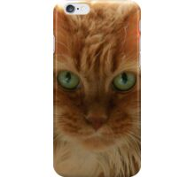 It Is Good To Be Cat iPhone Case/Skin