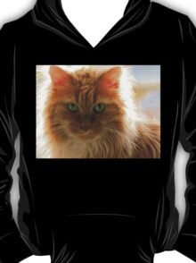 It Is Good To Be Cat T-Shirt