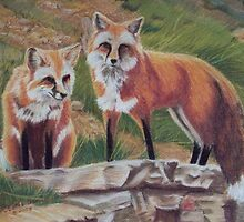 Foxes by P.C.Cotes- Gename