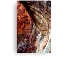 Weeping Rock Canvas Print