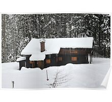 Cottage in the forest Poster