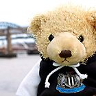 Geordie Bear by David  Parkin
