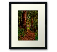 """The Pathway"" Framed Print"