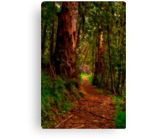 """The Pathway"" Canvas Print"