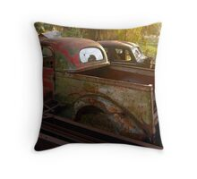 In the light of day Throw Pillow