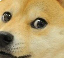 Doge - Wow Sticker