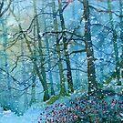 Blizzard in Broxa Forest by Glenn  Marshall