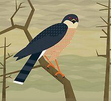 Sharp-Shinned Hawk by InRC