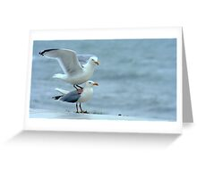 My Feet Are Cold! Greeting Card