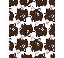 Choco Kitty Photographic Print