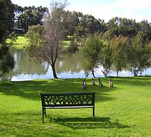 Bench by GuavaBeans
