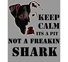 keep calm its a pit bull not a freakin shark Photographic Print