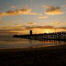 Seal Beach Pier by Pamela Hubbard