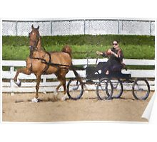 Impasto-stylized photo of a woman driving horse and carriage in show arena Poster