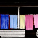 Towel Line - Stark, NH by Wayne King
