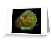 Rose -#2 Greeting Card
