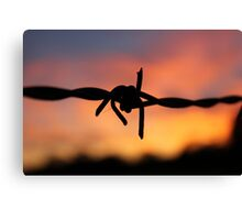 Barbed Silhouette Canvas Print