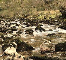 Ingleton River UK by Franco De Luca Calce