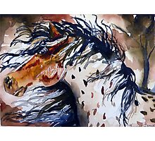 Fury in the Wind Photographic Print