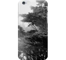 Golden Gate Park iPhone Case/Skin