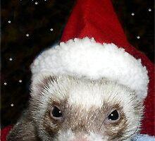 Santa Ferret by Glenna Walker