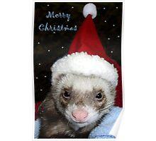 Santa Ferret Poster