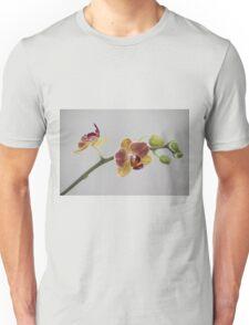 A stem of orchids Unisex T-Shirt