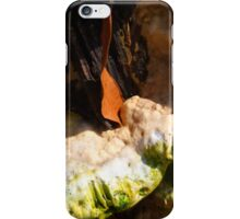 Old Bracket Fungus iPhone Case/Skin