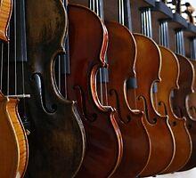 Violins by franceslewis