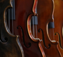 Violins Sticker