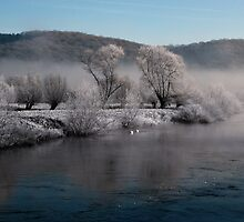 Winter Wye by crysophilax