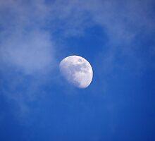 Blue Moon Rising by vigor