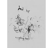 dead bugs (2014) Photographic Print
