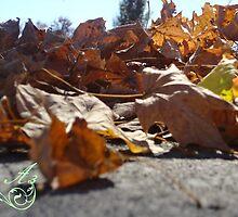 leaves by lyssuhhh