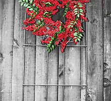 Holly Berry Wreath by Wendy Mogul
