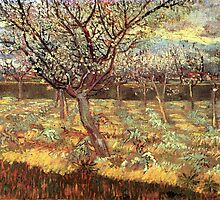 'Apricot Trees In Blossom' by Vincent Van Gogh (Reproduction) by Roz Abellera Art