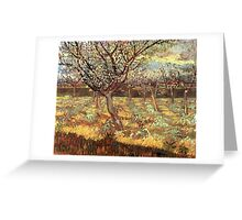 'Apricot Trees In Blossom' by Vincent Van Gogh (Reproduction) Greeting Card