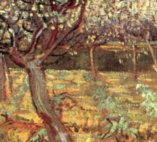 'Apricot Trees In Blossom' by Vincent Van Gogh (Reproduction) Sticker