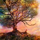 Sunset at Fox Mountain by Aimee Stewart