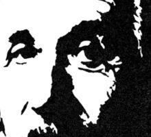 Einstein is not Che Sticker