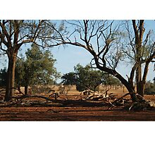 Outback NSW Photographic Print
