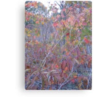 Gloaming Sunset, Marshland Canvas Print