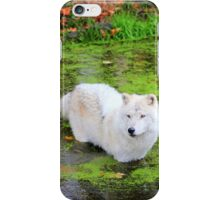Green Pond iPhone Case/Skin