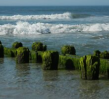 Ocean Tide  - Calendar Image   ^ by ctheworld