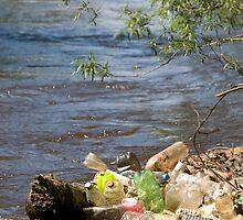 bottles damage river after flood by Arletta Cwalina