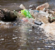 plastic bottles garbage damage river  by Arletta Cwalina